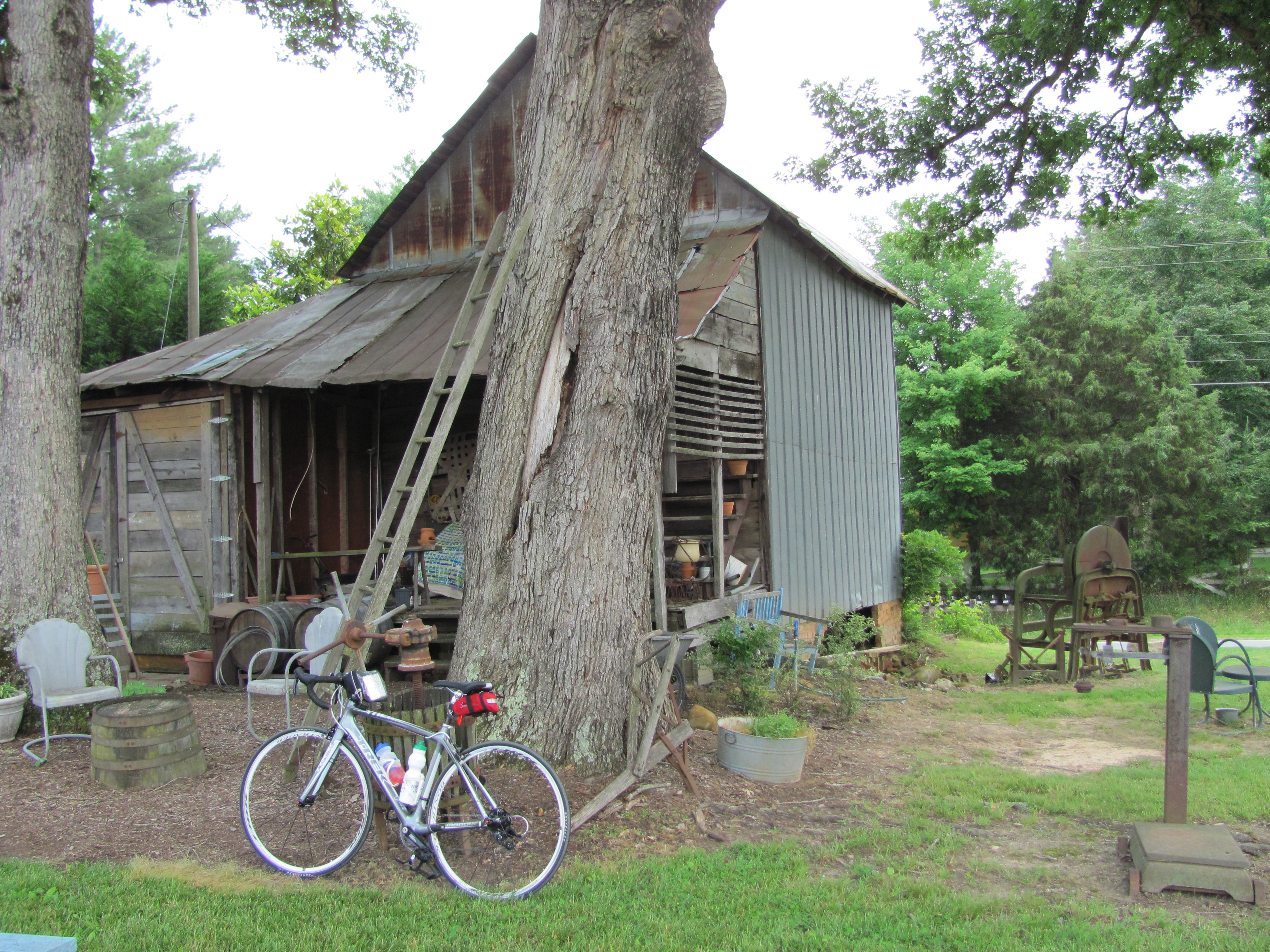 Listening to My Heart…Pedaling with My Feet…