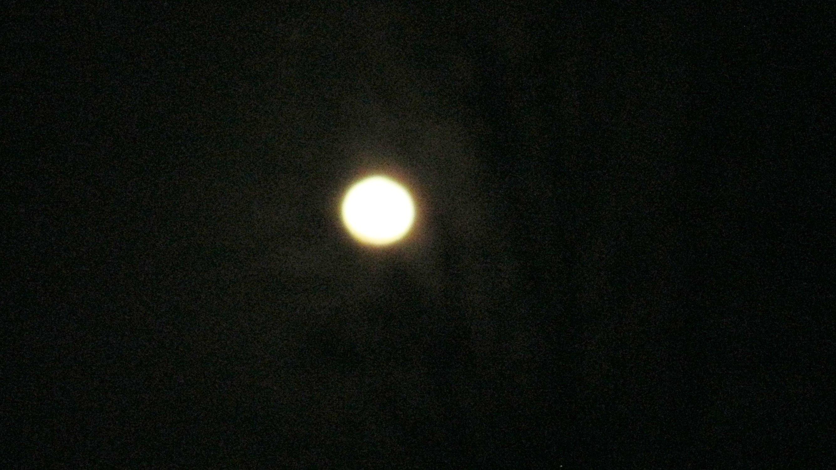 Moon Dance…